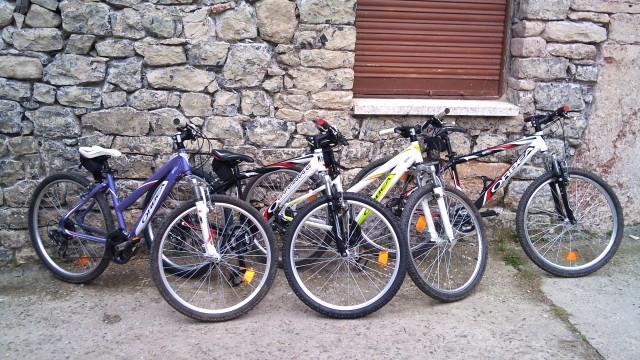 Alquiler de Bicicletas Bikenbabia