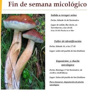 jornadas micologicas san emiliano babia setas